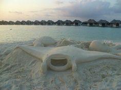 Manta at W Retreat Sand Art, Maldives, The Maldives