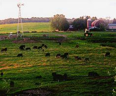 Farmscapes – 2010 Capture the Heart of America Photo Contest