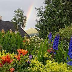 VÅRLI : Velkomstbedet - fra tidlig vår til sen høst