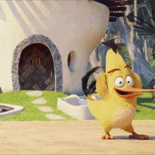 All Angry Birds, Angry Birds Yellow Bird, Angry Birds Chuck, Animiertes Gif, Animated Gif, Cartoon Gifs, Cute Cartoon, Gif Viernes, Animation