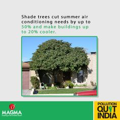 Plant more trees & do your share in saving our environment! Share if you agree. #MagmaPQI