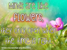 Minds are like flowers, they only open when the time is right -Stephen Richards