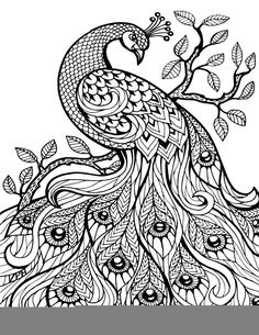 Coloring Pages Agreeable Coloring Pages For Adults: Zentangle And Adult Coloring On   Zentangle Adult  Coloring Pages For Adults Pdf Coloring Pages For Adults Online