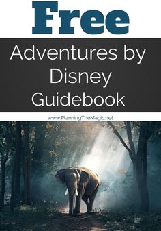 Free Adventures by Disney Guidebook! Imagine seeing the dramatic landscape of Iceland through a Disney Storyteller's eyes…. Adventures by Disney Disney On A Budget, Disney Vacation Planning, Disney World Planning, Disney Tips, Disney World Vacation, Disney Vacations, Disney Stuff, Disney Parks, Walt Disney