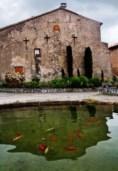 Koi swim in a pond in Vais, a French village high in de Pyranees, Cathar Region, in de South France