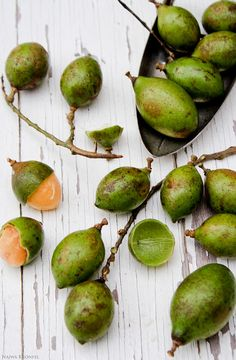 Spanish Lime/Genip/Quenepa (Melicoccus bijugatus). The Spanish Lime is a very close relative of the Lychee and Longan. The pulp is tart and melting, and it clings tenaciously to the seeds.