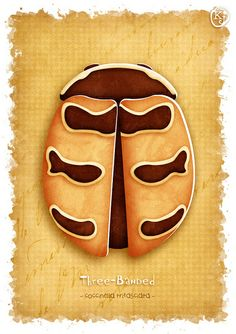 Close-up image from my illustrated digital cut-out Vintage Ladybug Collection, featuring the Three Banded Ladybug