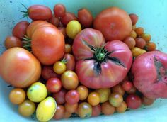 Recipes To Make The Most Of Summer Tomatoes | Boise State Public Radio