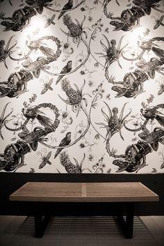 Iguana wallpaper