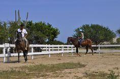 RANCHO MACANAO Nuestras instalaciones  www.ranchomacanao.com  Isla de Margarita