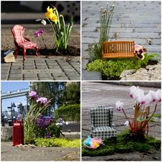 A guerrilla gardener plants mini gardens in potholes around East London. Love it!