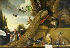 Голландский мастер анималистического натюрморта Melchior de Hondecoeter (1636- 1695). Обсуждение на LiveInternet - Российский Сервис Онлайн-Дневников