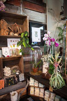 crimson hort, a horticultural store in oakland, ca
