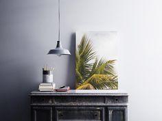 Palm tree tropical art summer miami florida beach house   Etsy Pineapple Art, Tropical Art, Exotic Plants, Creative Words, Fine Art Photography, Order Prints, Palm Trees, Print Design, Branding Design