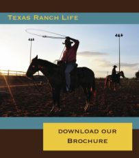 Working Texas Ranch Resort in Chappell Hill, TX