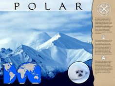 Poster: Polar biome - Pictures and text describe the polar biomes at the North and South Poles. Process Of Change, Biomes, Ecology, Map, Activities, Explore, Poster, Pictures, Science