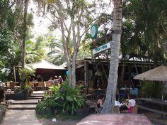 Photos of Treehouse on Belongil, Byron Bay - Restaurant Images - TripAdvisor