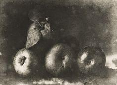 """Still Life  Henri Le Secq (French, 1818-1882)    c. 1852. Gelatin silver print, 10 x 13 1/2"""" (25.3 x 34.2 cm)."""
