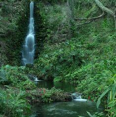 世界には私達の目を疑うような美しい景色が広がる場所や自然が多く存在しますが、今回はその中でも美しい滝をご紹介します。見る者を圧倒させるような壮大な滝から静寂の中で穏やかに流れ落ちる滝まで、さまざまな美しい滝の景色をご覧ください。