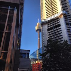Peek a boo, I see you Sydney tower!!