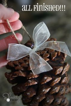 diy ornaments - hot glue a bead on top of pine cone to tie on the string - how clever is that