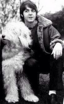 Paul y su perro viejo pastor inglés