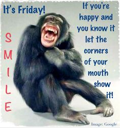 It's Friday! | SMILE! | Animal humor | Monkey funny | Laughter | End of the work week even though I work weekends | Happiness | TGIF! If you're happy and you know let the corners of your mouth show it!