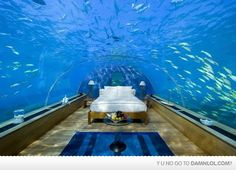 Underwater hotel is on my bucketlist