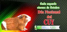 Día el cuy! promovido por William Lossio, ueño de Machu Picchu Cuy
