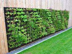 Always room for a garden. Home Garden Design, Home And Garden, Sustainability Kids, Wall Exterior, Green Garden, Sustainable Living, Backyard Patio, Outdoor Structures, Gardening