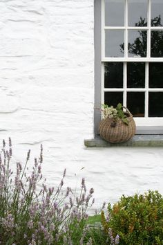 The Welsh House – Apartment Apothecary Coastal Cottage, Coastal Homes, White Cottage, Welsh Cottage, German Houses, Small Courtyard Gardens, Big Bedrooms, Beautiful Film, Vernacular Architecture
