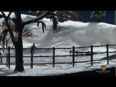 ▶ Model Snow and Ice - Model Scenery | Woodland Scenics® - YouTube