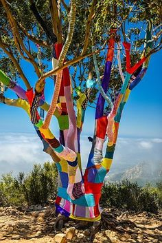 If you haven't noticed, I love to crochet. In the yarn world, for some reason, the hook takes a knitting back seat. So when I saw these photos of Crochet Graffiti,. Land Art, Guerilla Knitting, Art Fil, Urbane Kunst, Urban Graffiti, Cool Art Projects, Art Yarn, Tree Art, Public Art