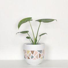 Painted Plant Pots, Painted Flower Pots, Pots D'argile, Decorated Flower Pots, Pottery Painting Designs, Concrete Crafts, Diy Bottle, Art N Craft, Diy Home Decor Projects