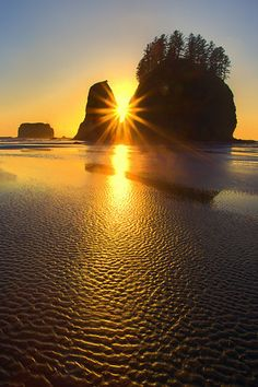Olympic National Park - Kevin McNeal Photography