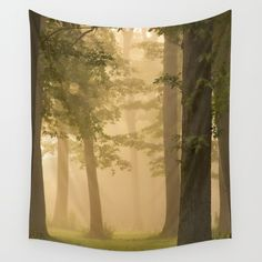 Foggy Morning wall tapestry. by Tjc555