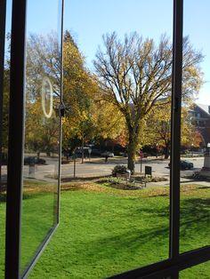 University of Oregon Dorm View