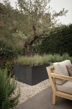 Garden Of Eden, Balcony Garden, Outdoor Chairs, Outdoor Furniture, Outdoor Decor, Open Air, Rooftop Pool, Atrium, Natural Living