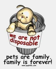 We are not disposable-pets are family, family is forever!!