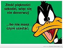 I changed some words to better fit on here lol Best Whatsapp Dp, Whatsapp Dp Images, Duck Dynasty, Cartoon Quotes, Funny Quotes, Daffy Duck Quotes, Looney Tunes Cartoons, Funny Cartoons, You Dont Want Me