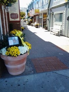 Pavers still for sale to purchase ftom Rehoboth Mainstreet installed on Penny Lane in Rehoboth Beach,  Delaware