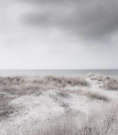 'The day time stood still', Lise Ulrich Photography Landscape Photography, Nature Photography, Alphonse Elric, Gray Aesthetic, A Series Of Unfortunate Events, Photography For Sale, The Witcher, Natural World, Natural Earth