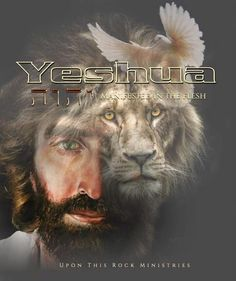 Lord And Savior, God Jesus, Lion Of Judah Jesus, Akiane Kramarik, Christian Warrior, God Is Amazing, Tribe Of Judah, Jesus Christ Images, Prophetic Art