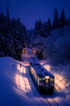 The magical Polar Express experience. Have done the Grand Canyon Railway a number of times. Would like to take the kids on some of these others. By Train, Train Tracks, Train Rides, Train Polar Express, U Bahn Station, Grand Canyon Railway, Japan Photo, Culture Travel, Winter Scenes