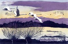 Winter Swans linocut 19.5 x 30 cm £150