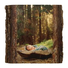 Newborn baby in the forest embedded on a Woodland Rectangle from Wood Photo. Family photography by www.korifriesen.com. #familyphoto #ForDad