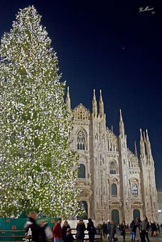 Christmas in Milan, Italy. See the sights and do some amazing shopping Christmas Scenes, Noel Christmas, Christmas Lights, The Places Youll Go, Places To See, Christmas In Italy, Christmas Markets, Sierra Nevada, Holidays And Events