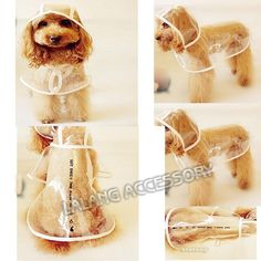 Free Shipping 1PCS Camouflage Pet Dog Cat Raincoat, New Arrival High quality Transparent Rain cape/coat for pet S/M/L/XL 671584-in Dog Clothing from Home & Garden on Aliexpress.com | Alibaba Group