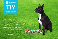 In just five easy steps, you can turn an old T into a chew toy for your dog.  Genius!