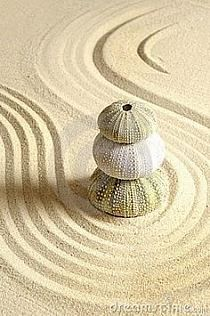 Raked Sand and Urchins - Colors:  Cream, White, Ecru